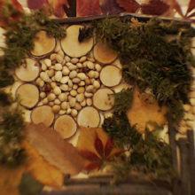 Cerchio d' autunno